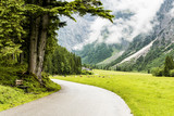 A valley leading from Lake Achen (Achense) in the North Austrian Tirol. Cattle can also be seen grazing. - 221696731