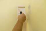 Hand applying paint on wall - 221714161