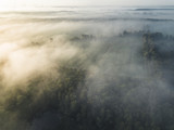Sonnenaufgang über Nebeliger Landschaft - 221728140