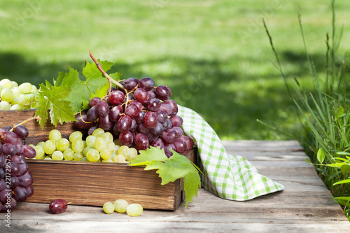 White and red grape on garden table