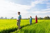 Family walking in rice field - 221739329