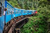 Train in Sri Lanka - 221739542