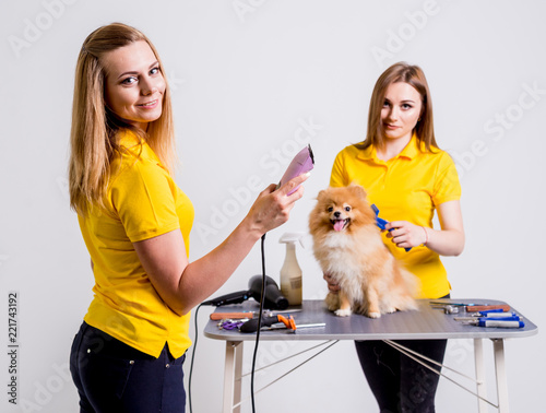 Leinwanddruck Bild Professional cares for a dog in a specialized salon. Groomers holding tools at the hands.