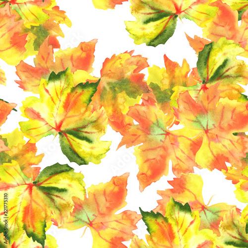 Leinwandbild Motiv A seamless pattern of watercolour autumn grape vine leaves on a white background