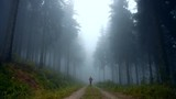 A young man walking down the road in foggy morning. - 221796927