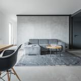 Gray home interior - 221800789