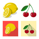 Vector design of vegetable and fruit symbol. Collection of vegetable and vegetarian stock symbol for web. - 221812994