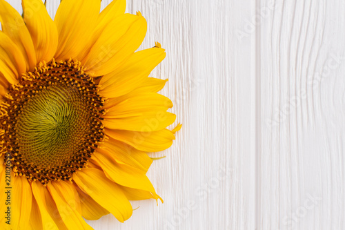Naklejka Yellow sunflower on wood close up. White wooden table background.