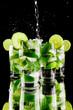 Leinwanddruck Bild - Pouring mojito