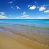 beach and sea - 221839975