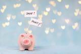 Sparschwein mit save money schildern - 221844126