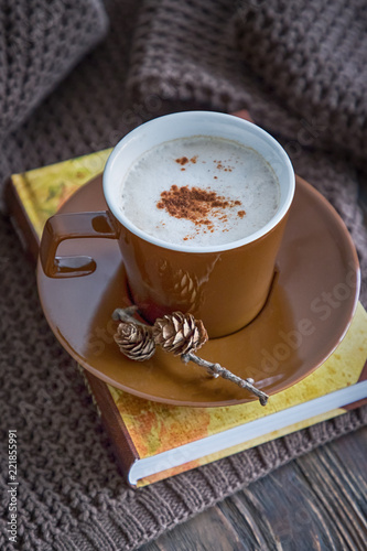 Autumn mood. Coffee cappuccino with cinnamon, book and knitted pullover on a brown background - 221855991