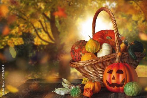 Leinwandbild Motiv Thanksgiving/Halloween backround with pumpkins