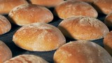Rows of bread, close up. Bakery conveyor moves loaves of bread. - 221865563