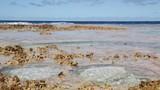 in polynesia the rocks of the coastline - 221869584