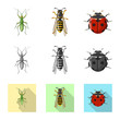 Vector illustration of insect and fly sign. Collection of insect and element stock vector illustration.
