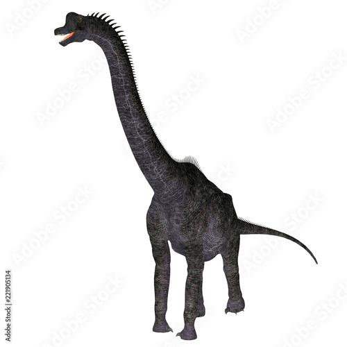 Fototapeta Brachiosaurus Dinosaur on White
