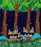 Cute raccoons cartoons - 221907520