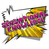 Sensational Knowledge - Vector illustrated comic book style phrase. - 221923187