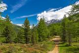 Wandern im Martelltal, Südtirol  - 221933127