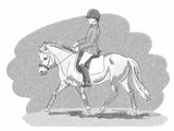 Illustration, graphics young rider and pony of black and white pen graphics. - 221970586