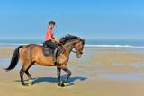 jolie cavalière sur la plage - 221971101