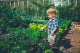 Little toddler doing some gardening - 221972701