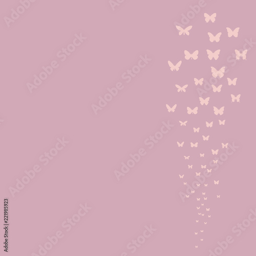 Fototapeta pink background with flying butterflies