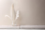 White quill feathers in glass bottle on white wood table. Feathers against white wall with empty place. - 221993372