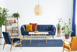 Retro armchairs with wooden frame and colorful pillows on a navy blue sofa in a vibrant living room interior with green plants. Real photo. - 221993969
