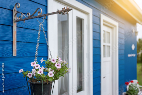 Sticker Anemone white and pink flowers in a flower pot hanging in front of a blue house with white windows and white doors.