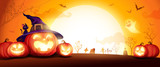 Halloween pumpkin patch in the moonlight. Jack O Lantern party. Horizontal banner.  - 222002960