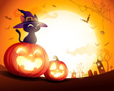 Black cat with witch hat on Halloween pumpkin in the moonlight. Jack O Lantern. - 222002997