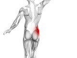 Conceptual hip human anatomy with red hot spot inflammation articular joint pain for leg health care therapy or sport muscle concepts. 3D illustration man arthritis or bone sore osteoporosis disease - 222019564