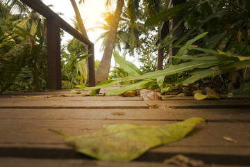 wooden bridge in the forest © Happy monkey