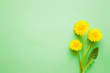 Fresh dandelions with leaf on pastel green desk. Minimalism. Bright colors. Mockup for special offers as advertising or other ideas. Empty place for inspirational, motivational text, quote or sayings. - 222028117