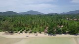 Aerial View of Palm Tree Coast Line with Sandy Beach by Tropical Sea in Thailand - 222029131