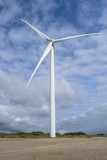 wind turbine at the coast - 222044379