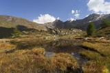 colori di fine estate rispecchiati in un laghetto in montagna