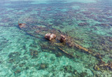 Half Submerged Shipwreck on Coral Reef