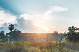 Landscape of beautiful sky with sun ray over serenity nature background. - 222067759
