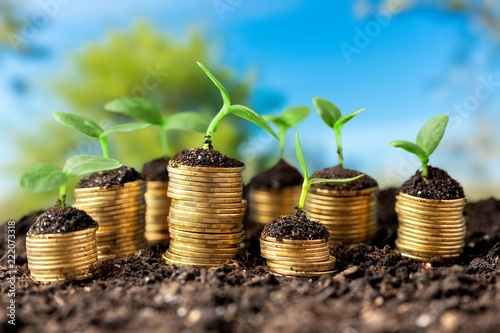 Leinwanddruck Bild Coins in soil with young plants on background