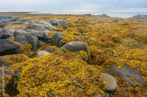 Leinwanddruck Bild Reykjanensviti lighthouse and beach, Iceland