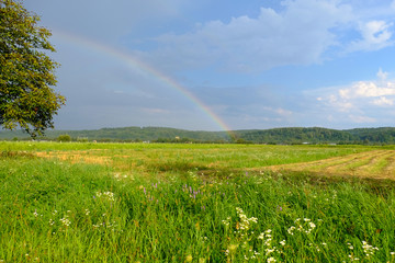 rainbow in the field against the beautiful sky