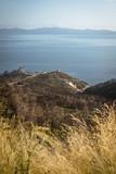 Landscape from Croatia, near Orebic town - 222146770