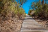 Isla Canela Costa de la Luz Andalusia Spain - 222183150