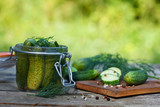 Homemade pickles in jars with dill. Outdoor image, green background. - 222199944