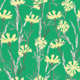 Plant seamless pattern of cornflowers and field spikelets, vector background illustration.