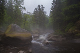 Big mossy rocks and rough water stream at misty afternoon in Harz mountain range forest Germany - 222219100