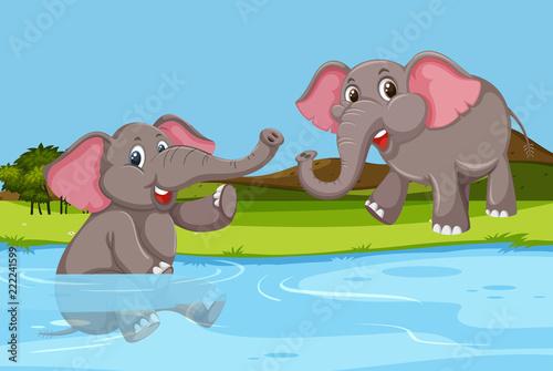 Fototapeta Elephant playing in water